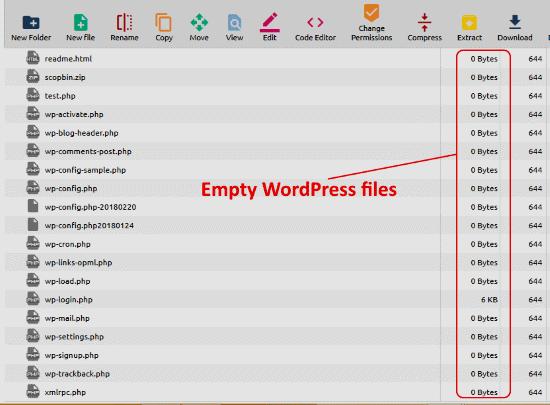 empty WordPress files