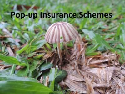 pop up insurance schemes